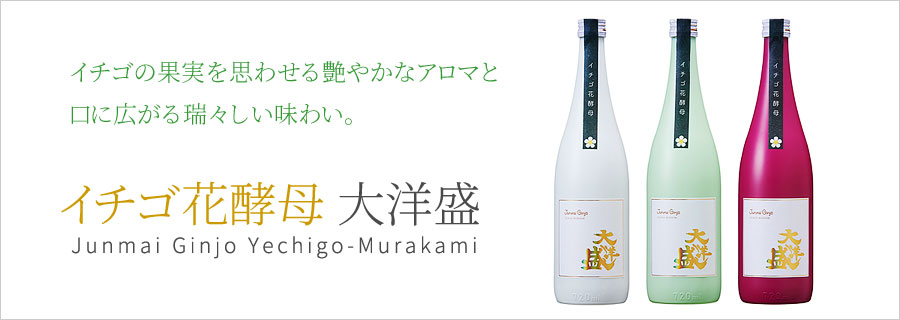 大洋酒造 イチゴ花酵母 大洋盛