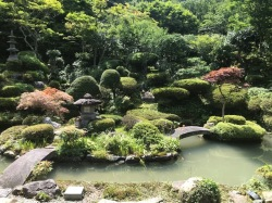 満福寺庭園